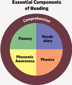 reading components no spelling