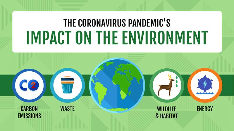Coronavirus Pandemic Impact on Environment Blog Header Compressed